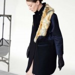 Asos Collection Fall 2012 Tessted (22)