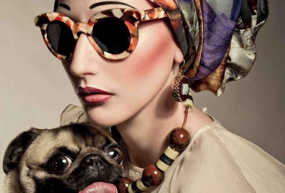 Fashion Dog Tessted Slider sm