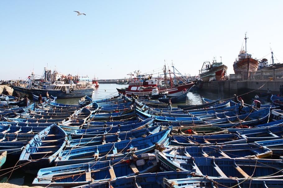 2. Essaouira Marokko Tessted Travel (14)
