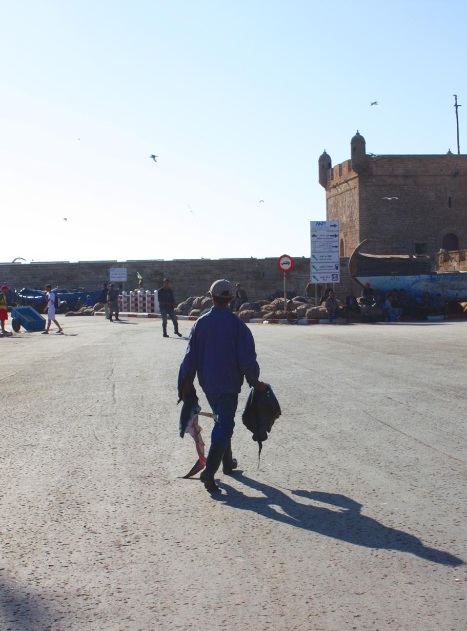 5. Essaouira Marokko Tessted Travel (31)
