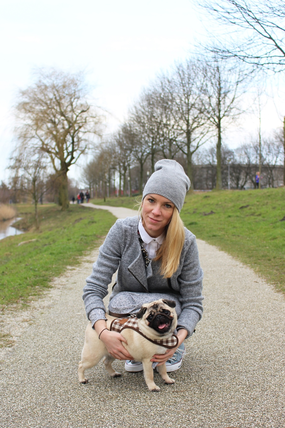 TESSTED CHUBSTER STREETSTYLE GREY (5)