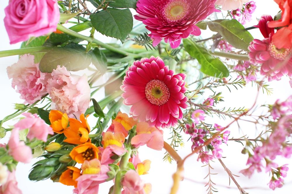 bloomon2